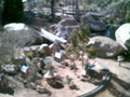 Another Take of The Railroad Garden
